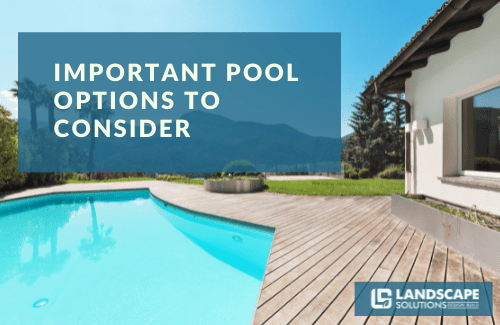 Important Pool Options You Should Consider